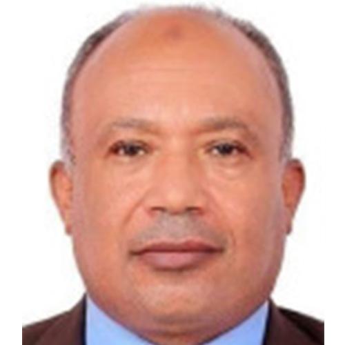 Aboul Ella Hassanien Ali